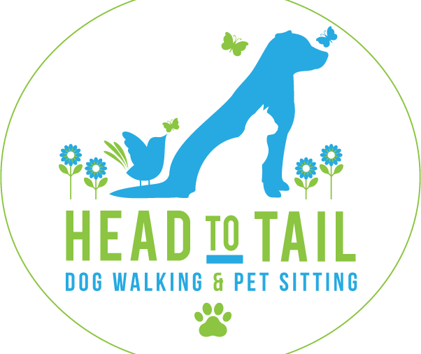Head to Tail Dog